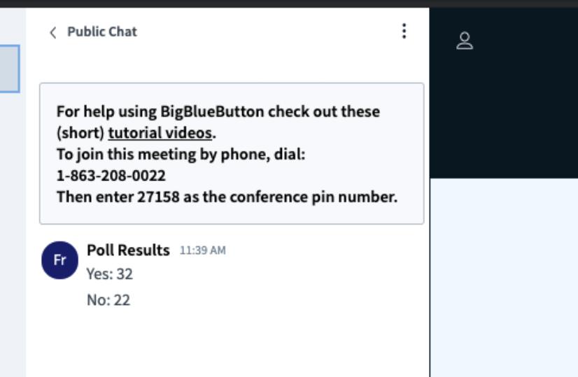 WebMeeting výsledky ankety během online setkání